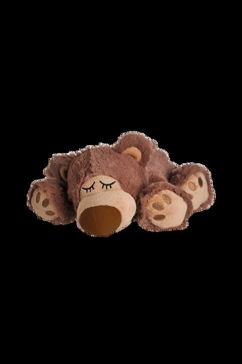 Sömnig Brun Björn