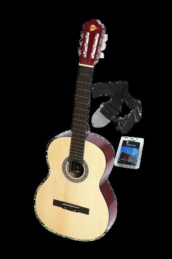 Teräskielinen kitara