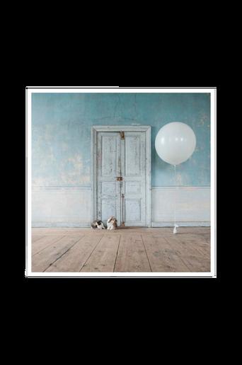 Juliste Bunny rabbits and ballon poster 50x50