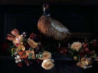 Juliste Dear Ruby - Bird by Flowers in burned colours 100x70