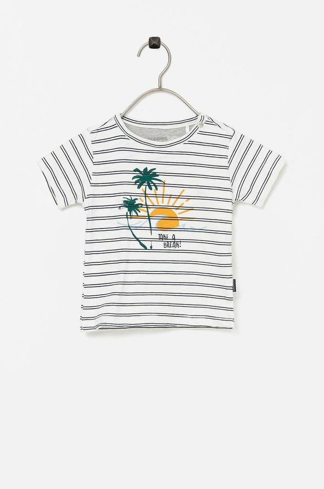 Noppies T-shirt B Regular T-shirt SS Asbury Park Aop