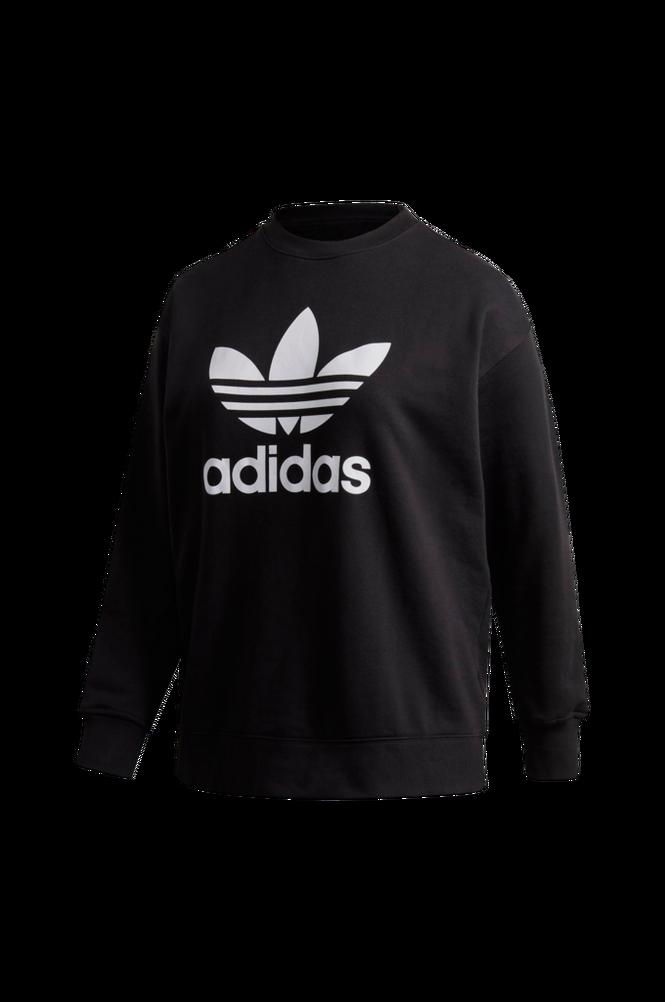 adidas Originals Sweatshirt Trefoil Crew Plus