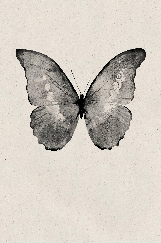 Malerifabrikken - Poster Black Butterfly - Natur
