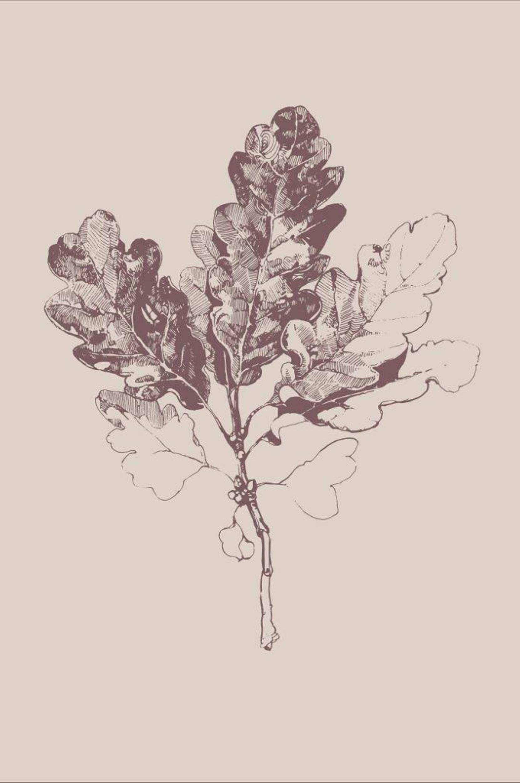 Malerifabrikken - Poster Botanica 3 - Natur