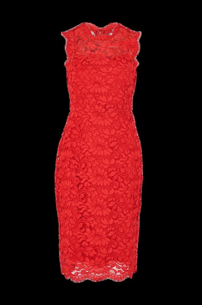 Lauren Ralph Lauren Blondekjole Addyson Sleeveless Day Dress