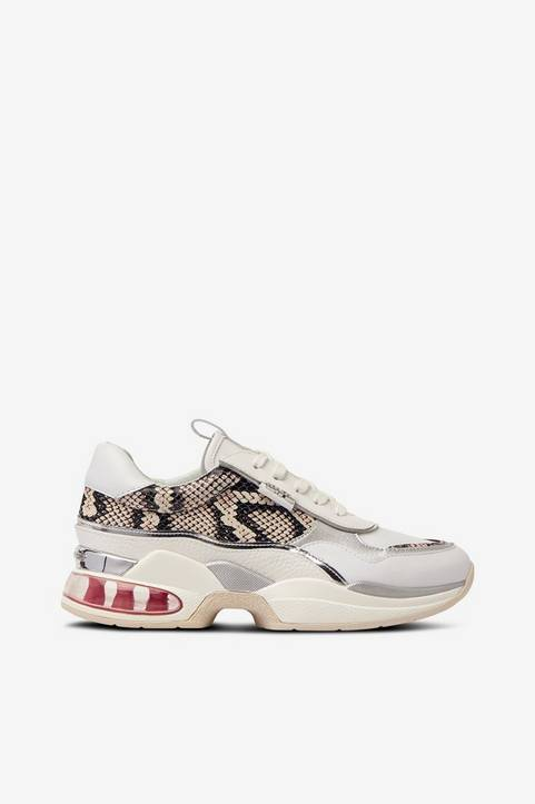 Sneakers Ventura Lazare Python Mix