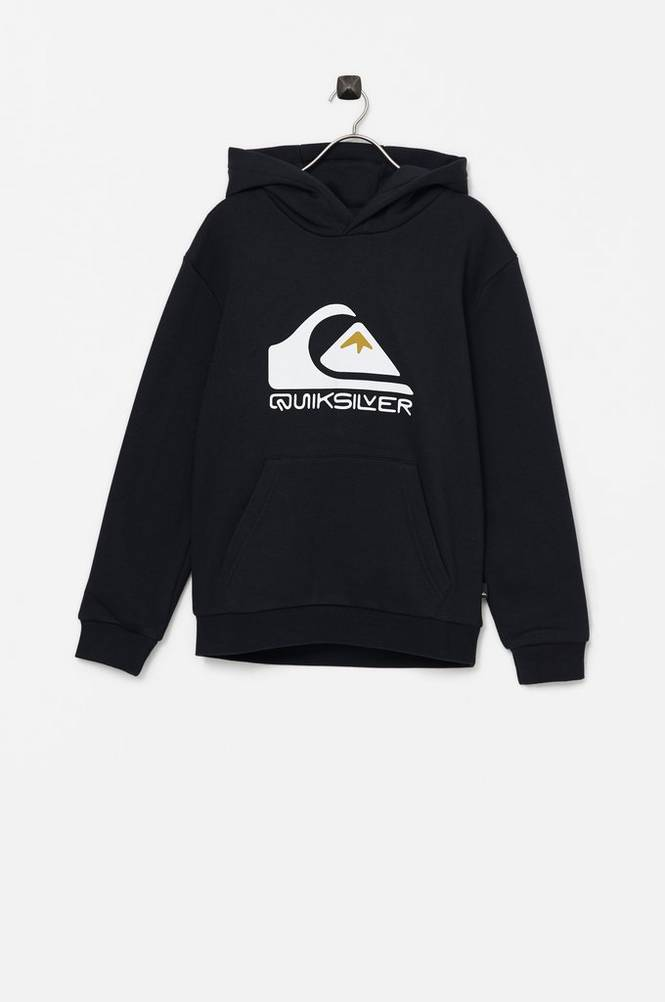 Quiksilver Hættetrøje Big Logo Hood Youth
