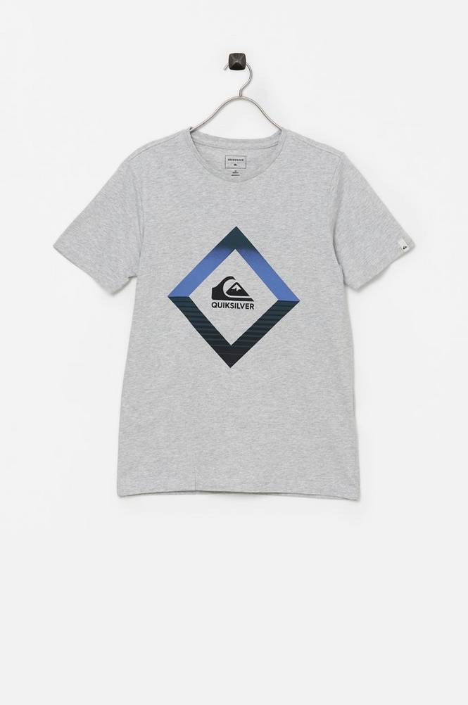 Quiksilver T-shirt Tropical Mirage SS Yth