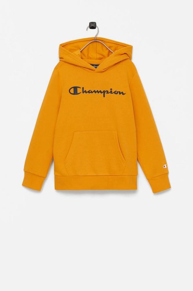 Champion Hættetrøje Hooded Sweatshirt