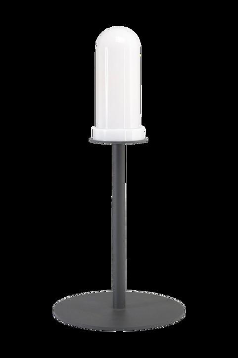 Lampfot Agnar