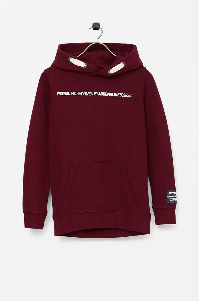 Petrol Sweatshirt Hooded