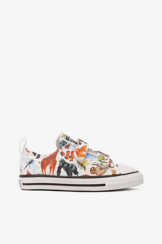 Converse Sneakers Chuck Taylor All Star 2V