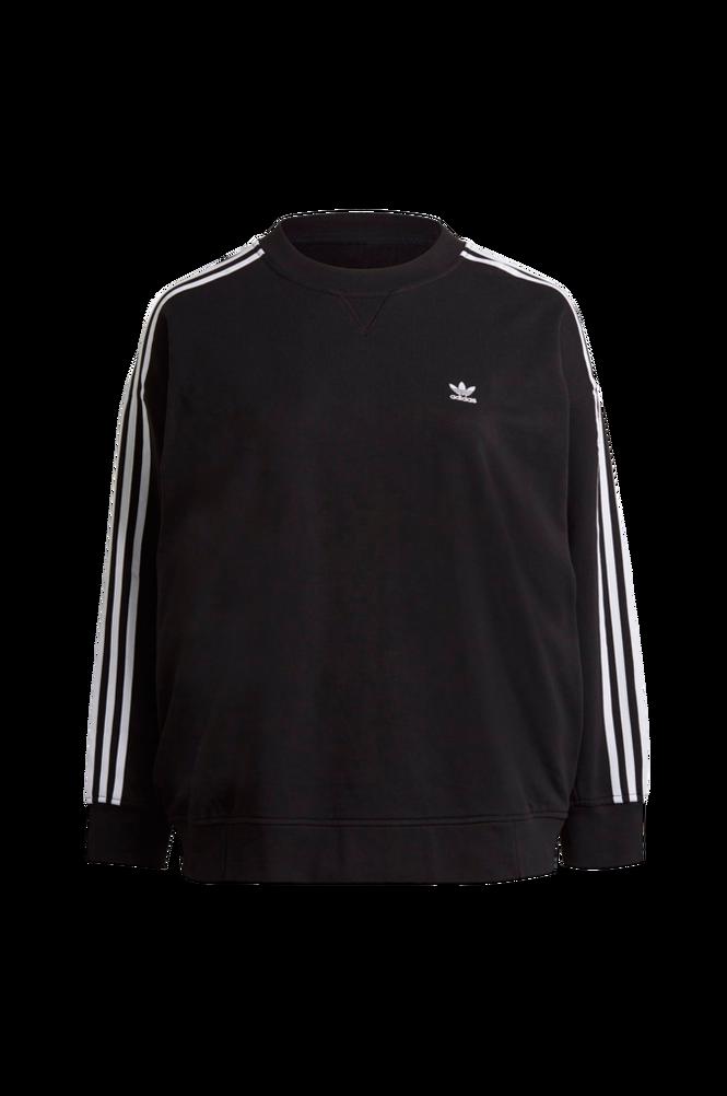 adidas Originals Sweatshirt Adicolor Classics Oversize Sweatshirt Plus