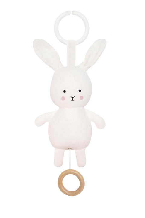 Speldosa kanin