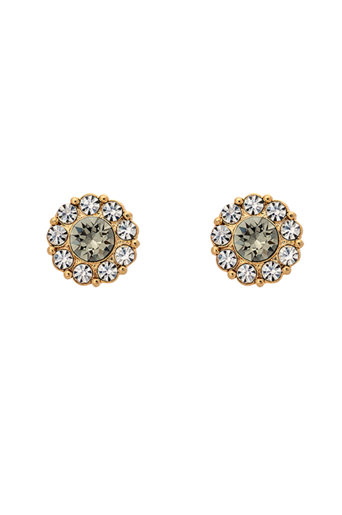 Lily and Rose Øreringe Petite Miss Sofia Earrings Gold