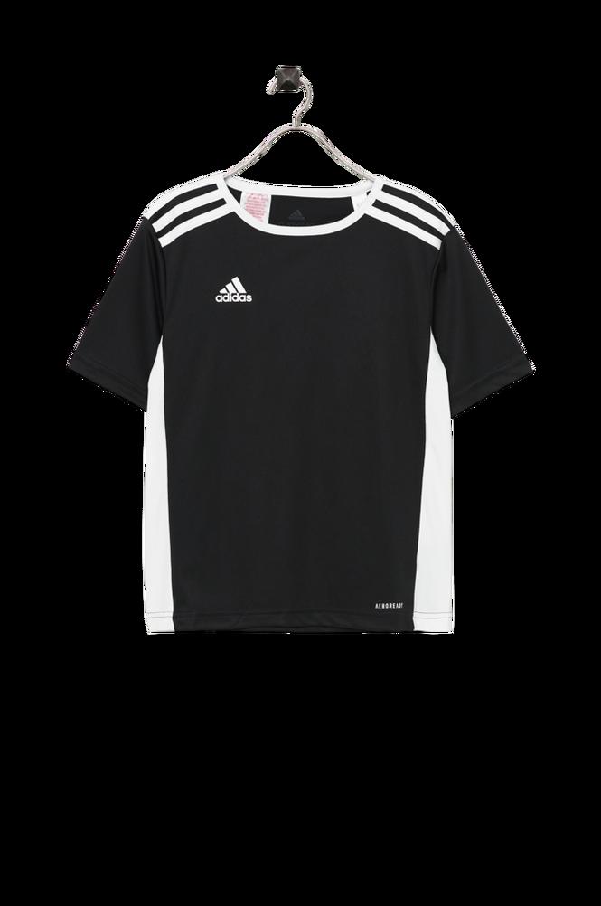 adidas Sport Performance Trænings-t-shirt Entrada 18 Jsyy