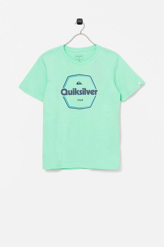 Quiksilver T-shirt Hard Wired SS Yth