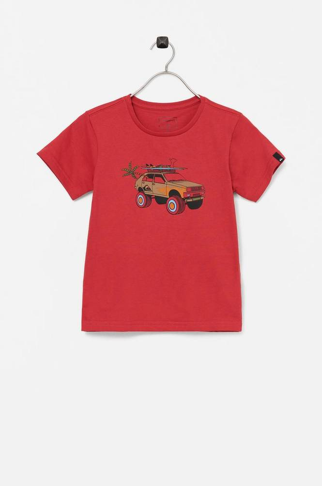 Quiksilver T-shirt Very Rootsy SS Boy