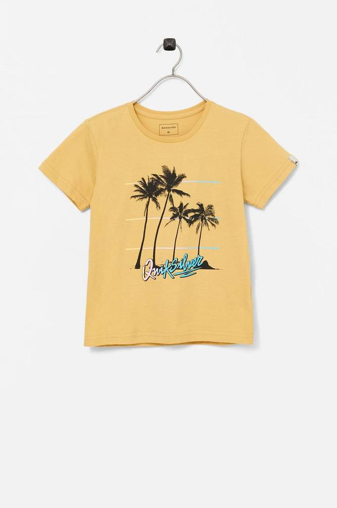Quiksilver T-shirt Over the Mountain SS Boy