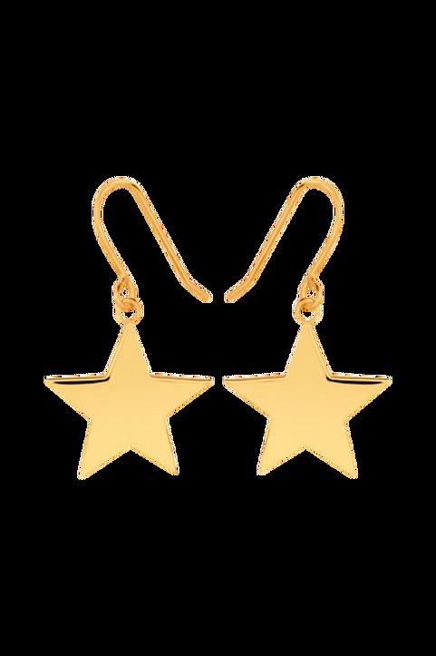 Örhängen Star Hook Earrings