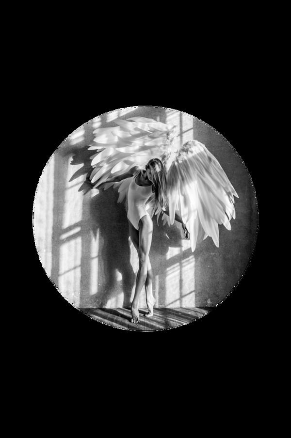 Bilde av Bilde Angel dream 1 - 30151