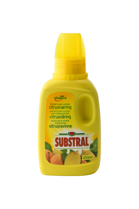 Substral Citrusnäring 250 ml