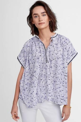Begonia paita