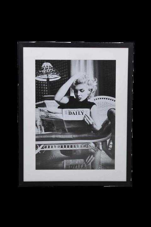 Ben Tavla Marilyn dailey news