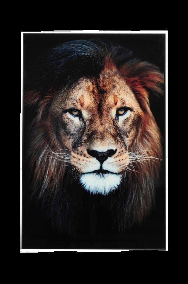 Bilde av Bilde Løve - 30151