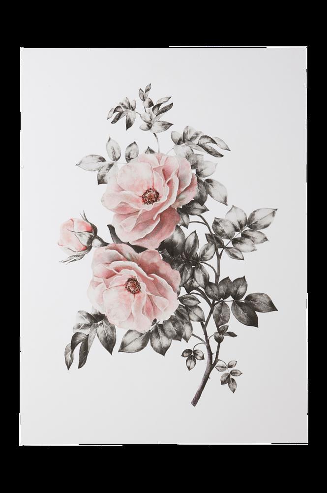 SPRING FLOWER poster 50×70 cm