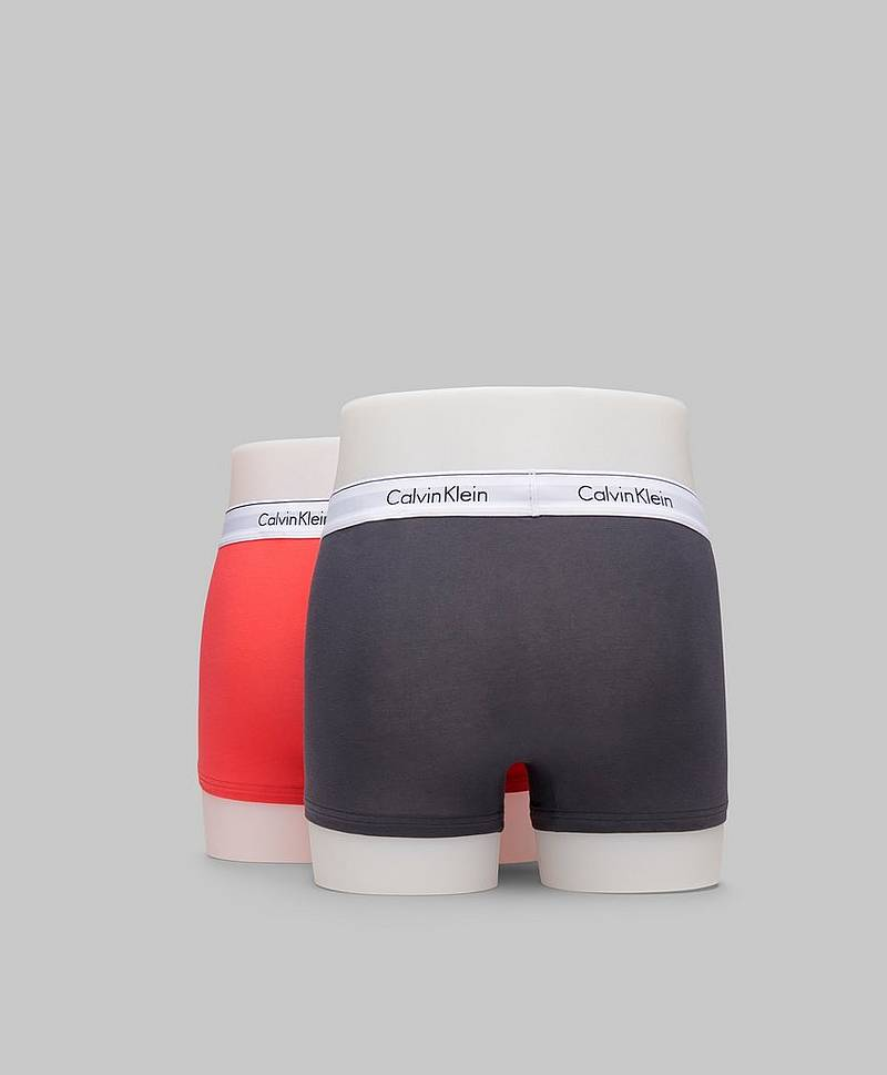 Underbukser 2-pack Trunk Modern Cotton
