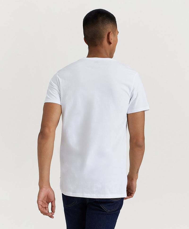 T-Shirt Graphic Set-In Neck Tee