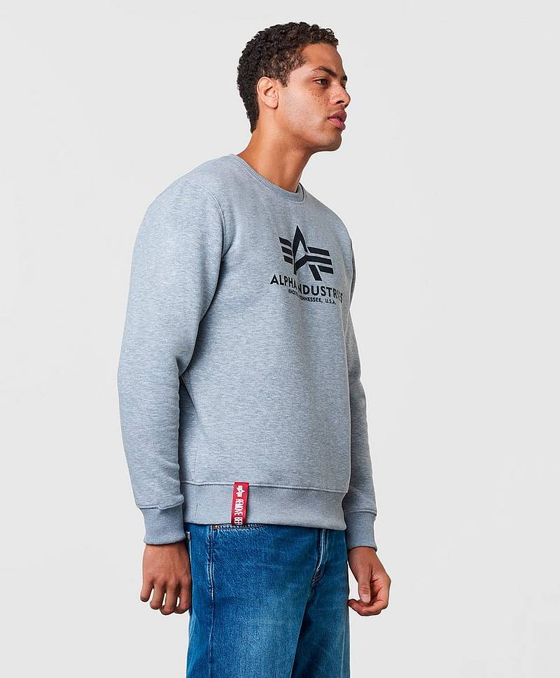 Sweatshirt Basic Sweater