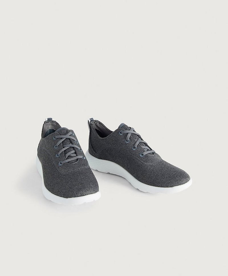 Sneakers Flyroam Mid Grey