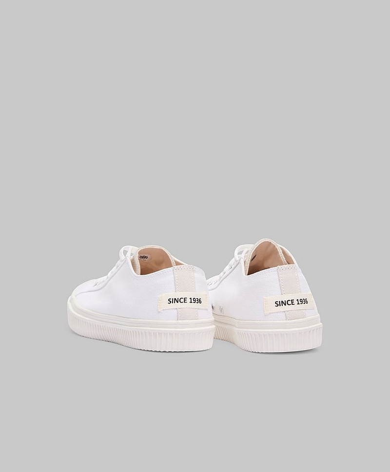 Sneakers Alfred Canvas White