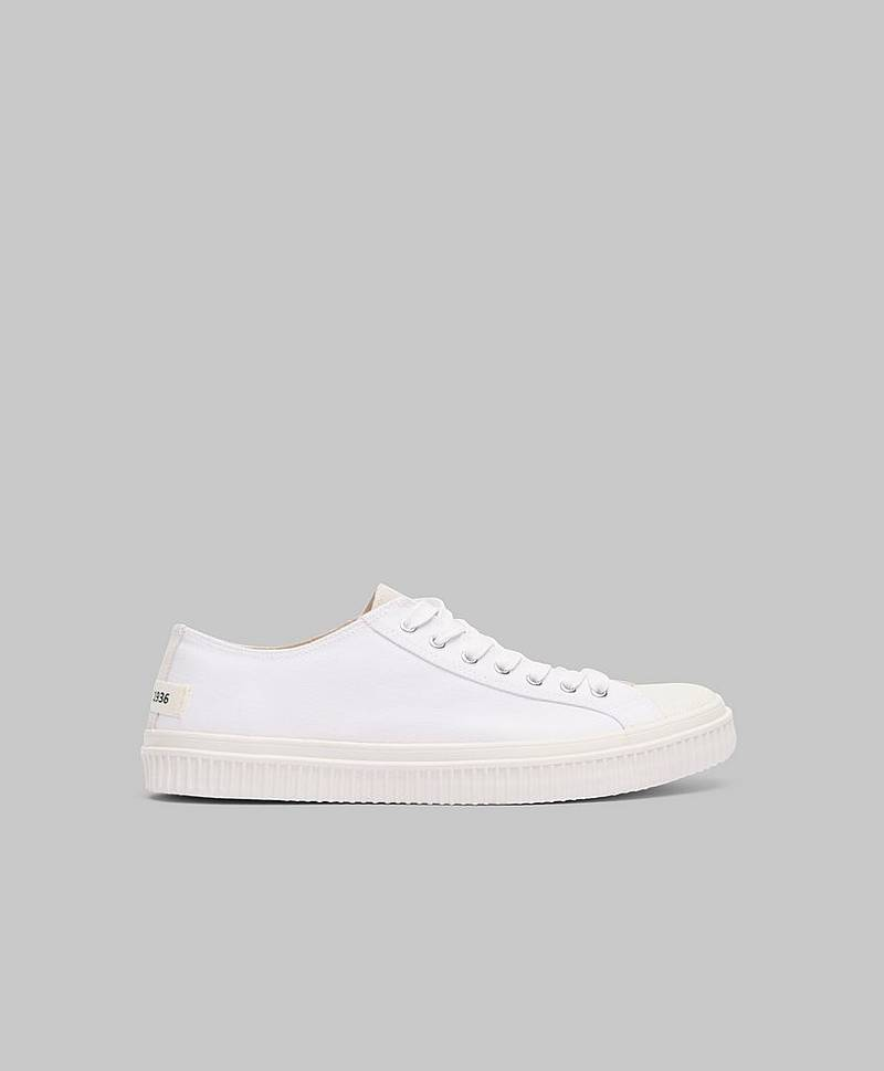 Alfred Canvas White