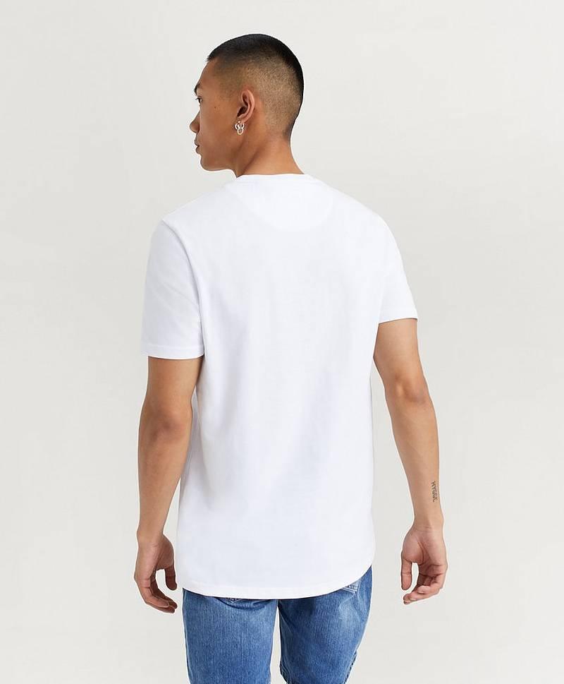 659640b3afac Lyle-scott T-shirt med tryck   Herr - Köp Online - Stayhard.se