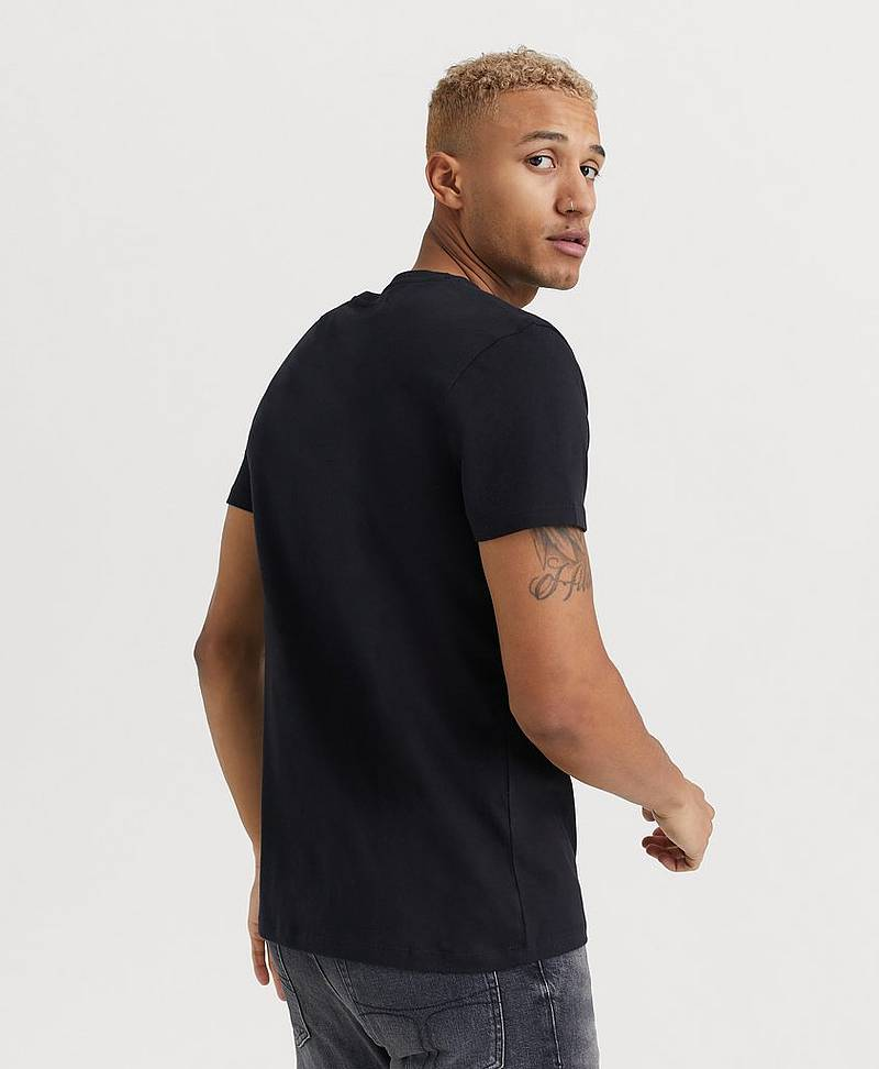 T-shirt SS Core Established Tee