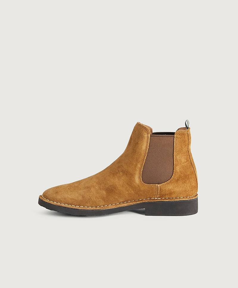 Chelseaboots Talan Chelsea Suede