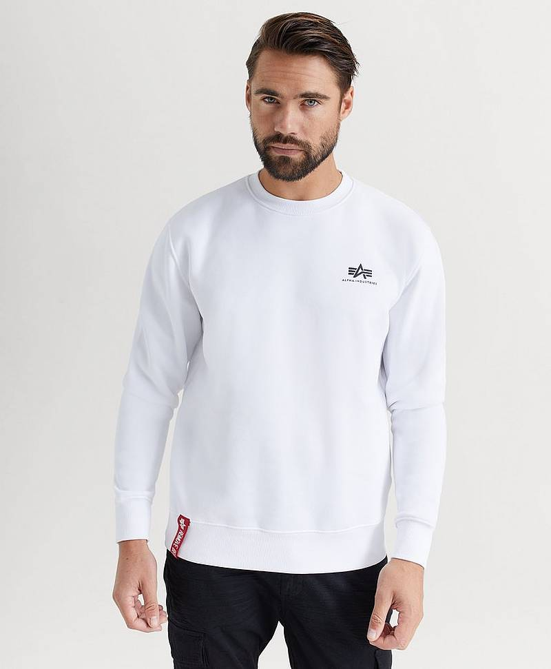 SWEATSHIRT Basic Sweater Small Logo