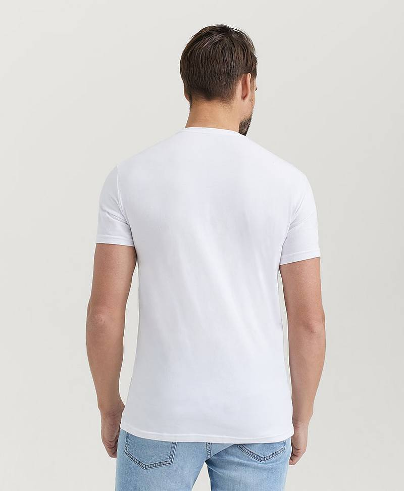 T-shirt Pure Organic Cotton Tee