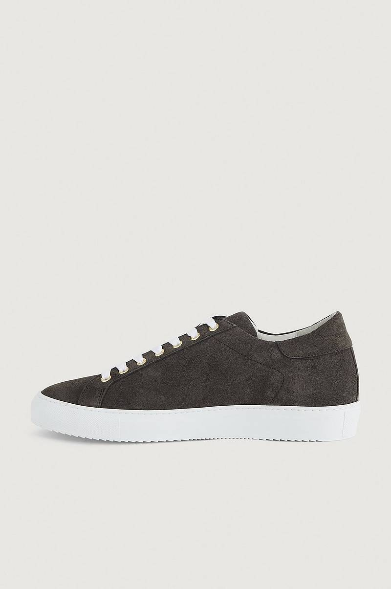 Tennarit Wingfield Suede