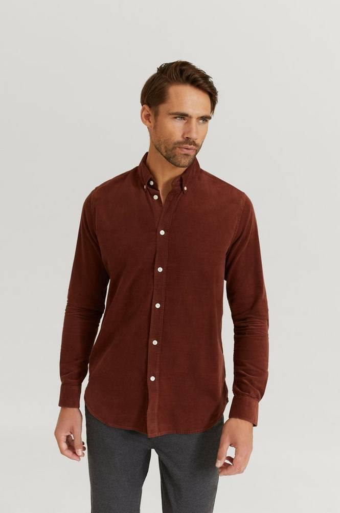 Kauluspaita Liam BX shirt 10504